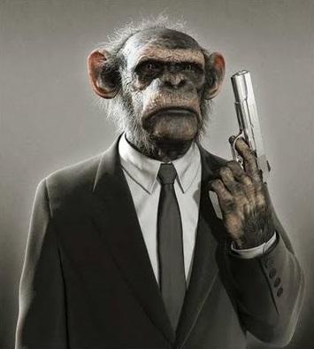 Evolution-Morality